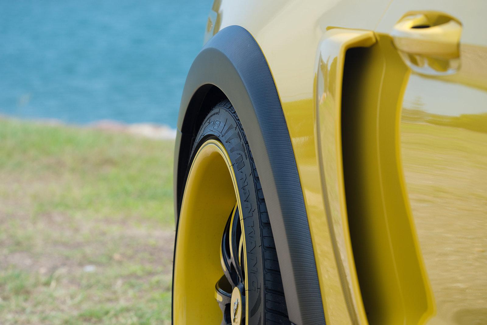 Mustang Side Scoops